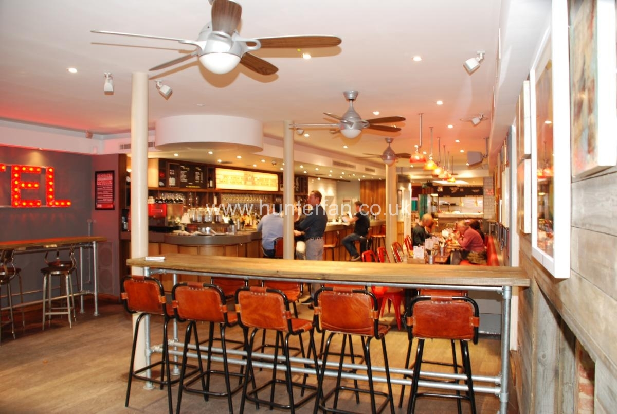 Restaurant ceiling fan gallery for Home restaurant