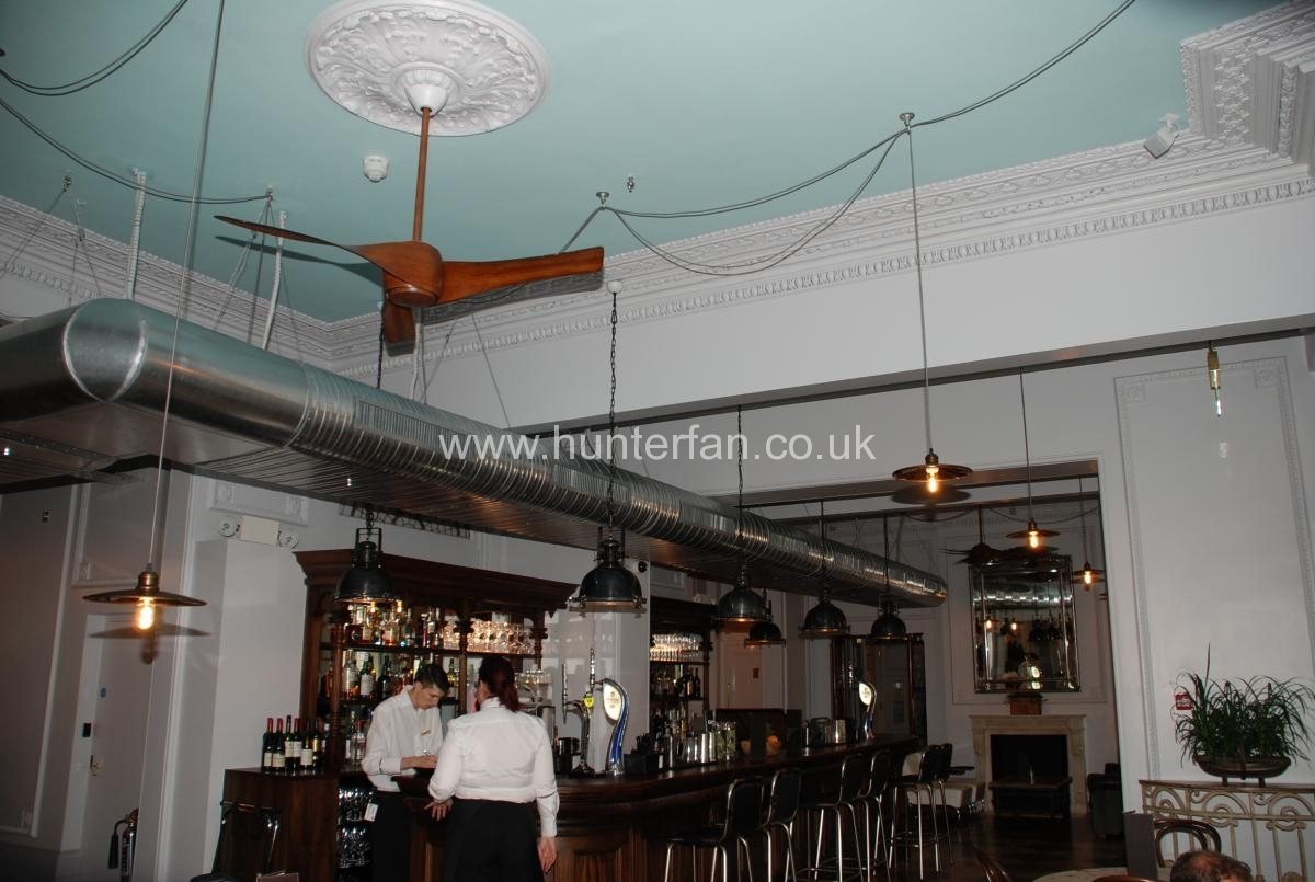Restaurant Ceiling Fan Gallery
